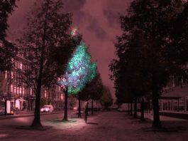 Glowing-Tree-Urban-setting-Roosegaarde-Dezeen_644
